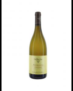 Francois Carillon Bourgogne Blanc 2019