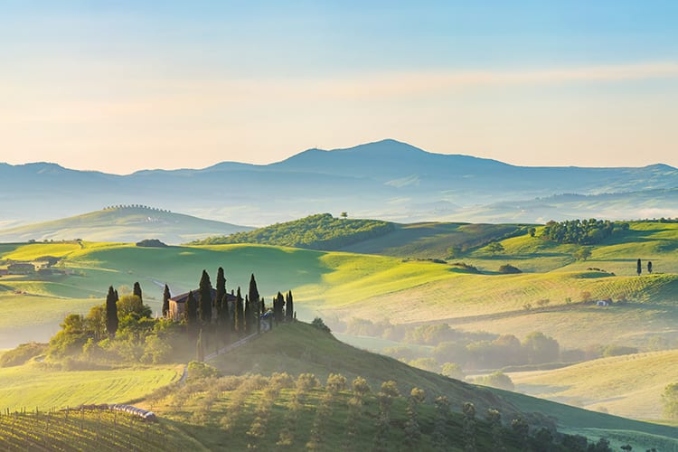buy tuscany wines